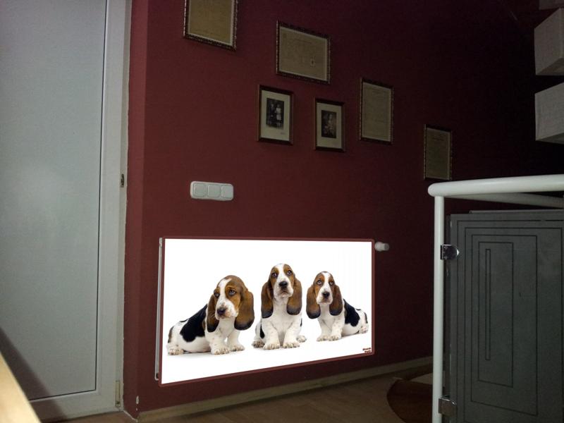Üvegborítású radiátor I.